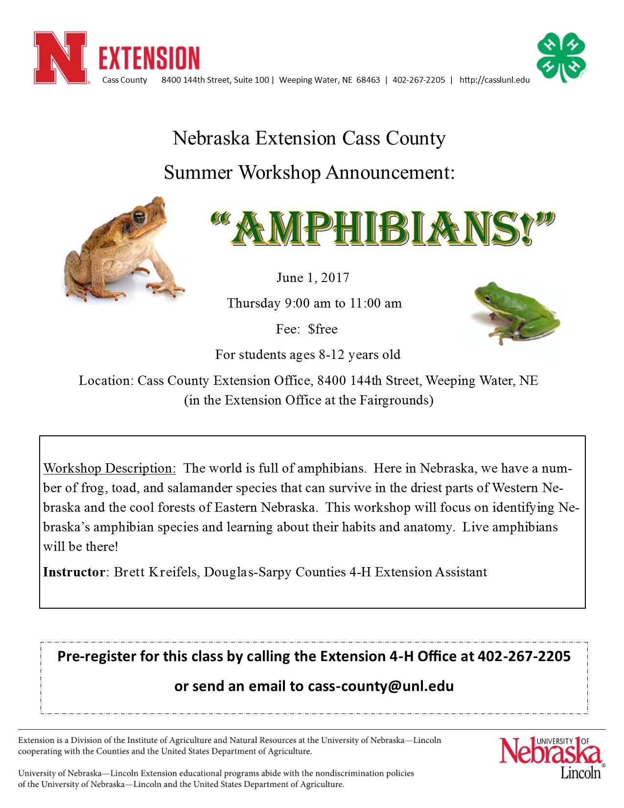 Amphibians workshop flyer