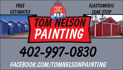 Tom Nelson Painting